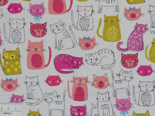 Kitty - Cats Pink